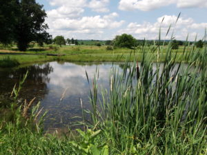 waterways permitting experts in Pennsylvania